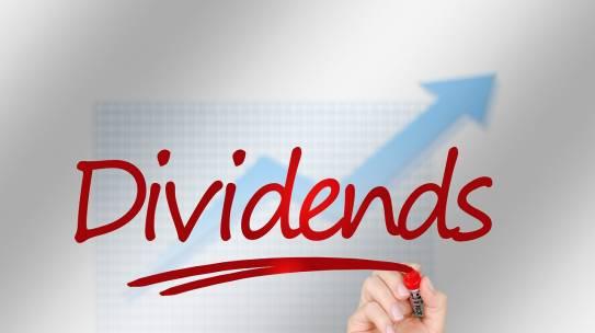 דיבידנד – Dividend